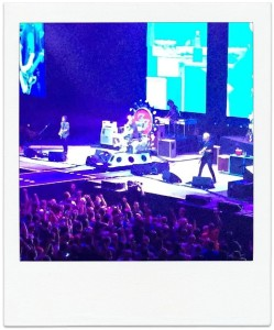 Dave Grohl throne snapshot